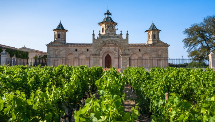 castle in Bordeaux and vineyards