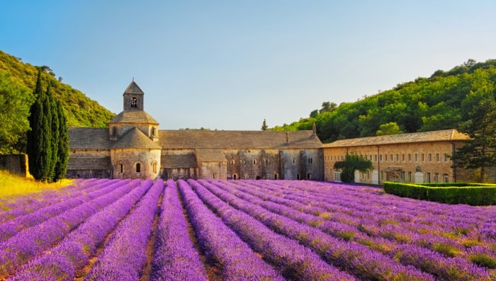 Abbey of Senanque in Southern France