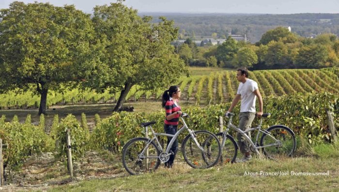 wine tour in the loire valley