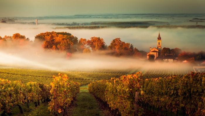 saint-emilion, france vineyards and landscapes