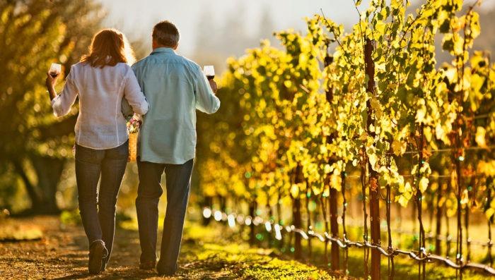 romantic couple walking in vineyards