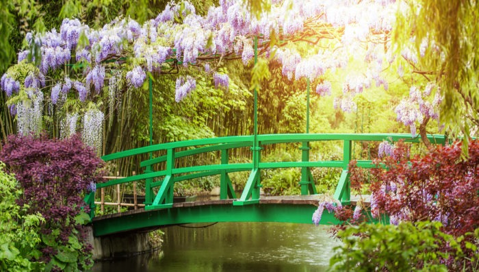 parc in france with beautiful flowes