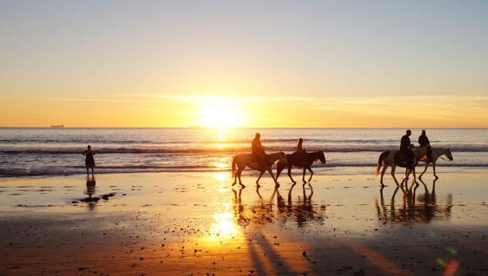 camargue-vacations-paradise-france