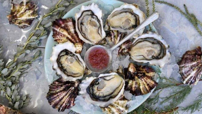 france-food-oysters-travel