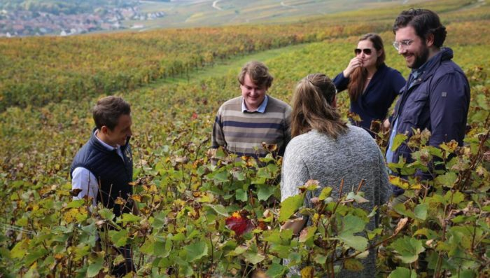 tour group in champagne vineyard